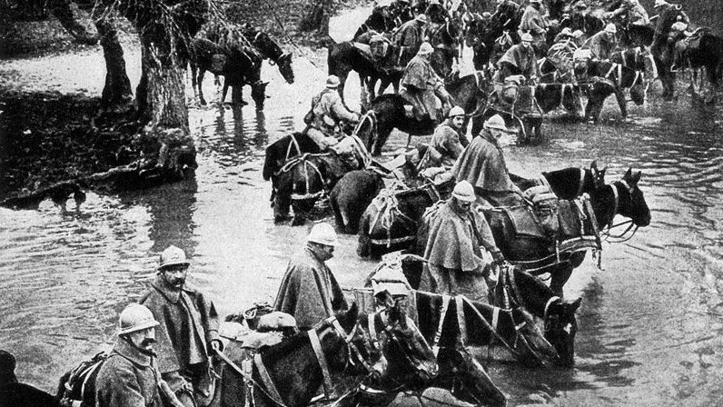 French train horses resting in a river on their way to Verdun. 300 ppi scan of the National Geographic Magazine, Volume 31 (1917), page 338: RESERVES CROSSING A RIVER ON THE WAY TO VERDUN.